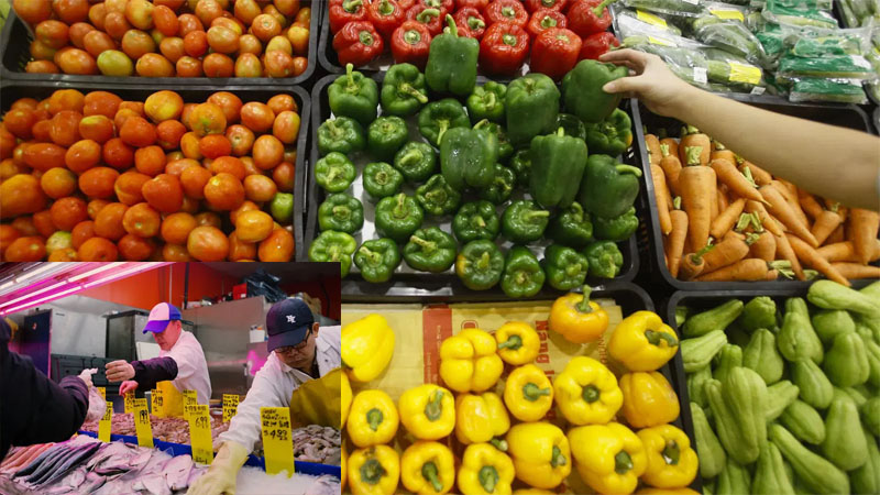 How Keeping Food Fresh Have Evolved